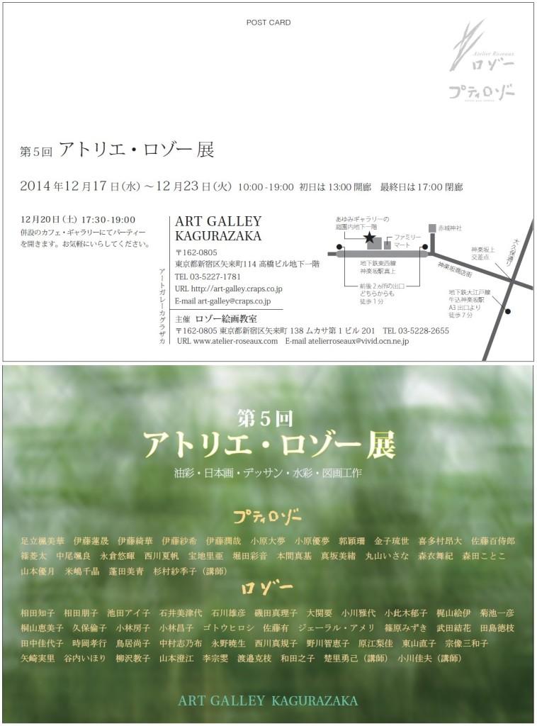 ロゾー DM 2014 2